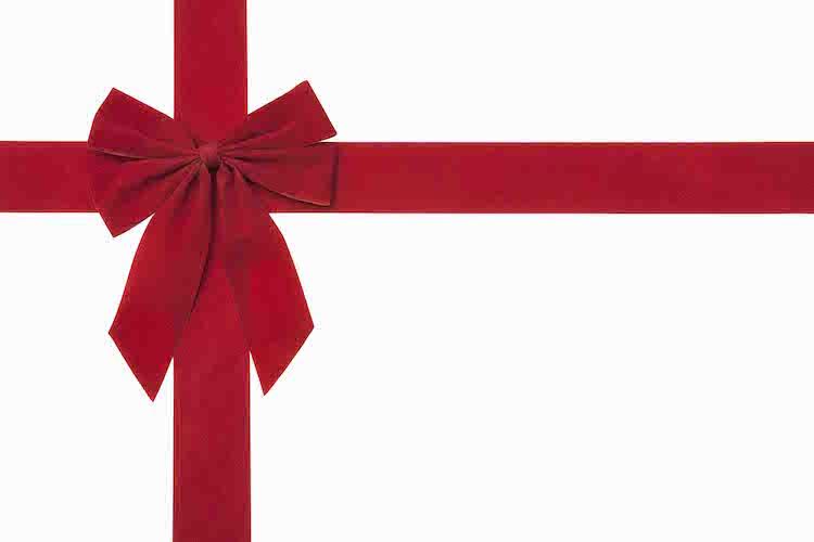 Swegway Pro UK Christmas Gift