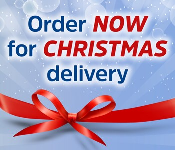 Buy Hoverboards before Christmas UK Swegways delivery