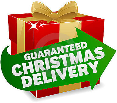 HOVERBOARDS UK Christmas Delivery Guarantee