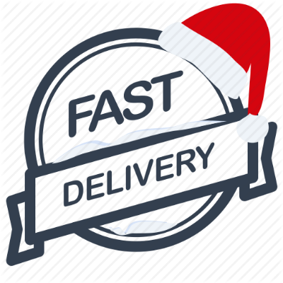 HOVERBOARDS UK Christmas Delivery Guarantee Swegway