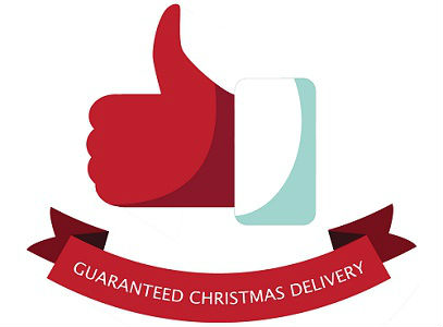 Trustworthy Hoverboards UK Guaranteed Christmas Delivery